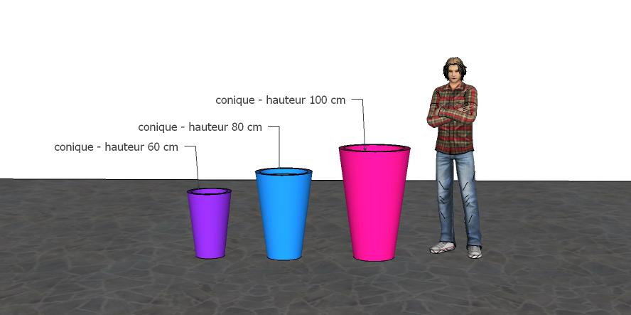 proportions bacs coniques