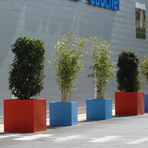 Bacs à plantes carrés sur un parking en région parisienne