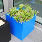 bac à plantes cube