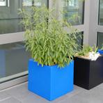 Bac à plantes carré 60 cm bleu