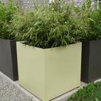 Bac à plantes cubique hauteur 80 cm