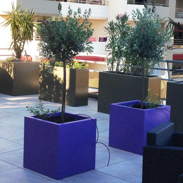 Bac plantes cubique hauteur 60 cm bacs et jardins for Bac plante jardin