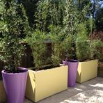 Bacs jardinières - couleur beige vert RAL 1000