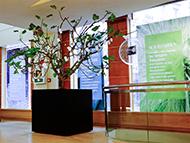 Grand bac cube placé dans un hall d'accueil